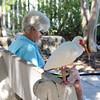 04. Reading with an ibis (Misty Garrick) Tags: johnpennekamp johnpennekampreef johnpennekampcoralreefstatepark coralreef florida keylargofl keylargo floridakeys atlanticocean