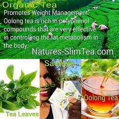 Green Tea Extract (Natures SlimTea) Tags: tea matcha greentea herbaltea detox oolongtea puerhtea healthyliving slimmingtea loseweightfast organictea beachbody healthylife slimbody weightwatches greenteaextract naturalweightloss wuyitea weightlosstea herbalweightloss slimtea detoxtea howtoloseweightfast diettea dieterstea greenteabenfits organicweightloss extreamweightloss