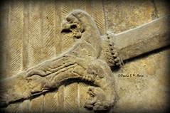 Assyrian sword's sheath (Assyria, Babylon, Akkad, Sumer...) Tags: bucket spirit iraq relief bracelet sword turban protective britishmuseum bas mesopotamia bowel alabaster sheath polos ashurnasirpal nimrud kalhu armlet apkallu royalthrone headdess calah banduddu