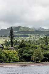 Road To Hana, Maui - 70 (www.bazpics.com) Tags: ocean from road landscape island hawaii islands town us scenery honeymoon village unitedstates pacific maui hana hi hāna