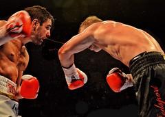Boxing: Frank Buglioni vs Fedor Chudinov (sophie_merlo) Tags: sport boxing fedorchudinov frankbuglioni