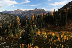 424B6564 (forrest.croce) Tags: mountains larches northcascades noca fall color larch