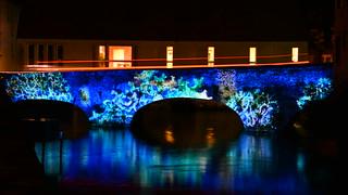 Chartres en Lumières 2015 - Pont Bouju
