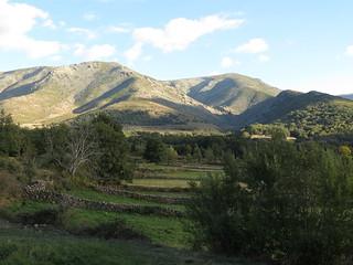 Spain Ibex Hunt & Driven Partridge Hunts 42