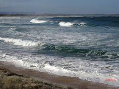 Warilla Beach (pat.bluey) Tags: warilla newsouthwales australia southcoastnsw warillabeach 1001nights 1001nightsmagiccity spiritofphotography