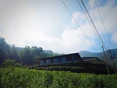 2015-10-26 09.44.01 (pang yu liu) Tags: travel 10 oct homestay 阿里山 旅遊 alishan 2015 民宿 十月 mimiyo 祕密遊