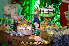 FAZENDINHA DO TULIO 2015 FINAL-2 (agencia2erres) Tags: aniversario 1 infantil festa ano fazenda fazendinha