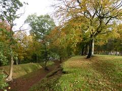 Antonine Wall - Watling Lodge, Tamfourhill, Falkirk (luckypenguin) Tags: autumn trees scotland historicscotland falkirk camelon tamfourhill antoninewall