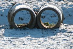 best of mp en ingena (256 van 377) (ingenavandijk) Tags: spijkenisse januari2010