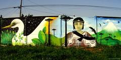 Mañkepillan (Felipe Smides) Tags: mural aves pájaros valdivia mapuche volcán garza muralismo newen cóndor lanco pillan wallmapu pewen smides felipesmides mañke