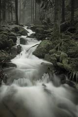 Waterfall #6 (muman71) Tags: gertelbach nikon schwarzwald blackforest wasserfall waterfall badenwürttemberg dsc6744