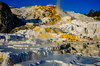 Mammoth Hot Springs (Travel by WestEndFoto) Tags: agenre usa natural flickrtravelyellowstone 2013yellowstone us bsubject mammothhotsprings flickr landscapephotography travel flickrtravelbywestendfoto scape wyoming queueparkepnextinline hotspring yellowstonenationalpark naturephotography dgeography fother unitedstates
