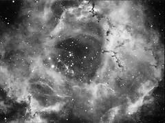 Rosette Nebula NGC 2237 and NGC 2244 Ha (Bright Sky Photography) Tags: rosette nebula rosettenebula atik 314l astrophotography ngc2237 ngc2244 stars cluster starcluster ha narrowband baadar astronomy space deepsky moneceros bok globules hydrogen alpha astrometrydotnet:id=nova1910202 astrometrydotnet:status=solved