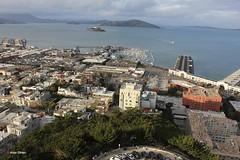 Coit Tower, 1 Telegraph Hill Blvd, San Francisco, CA 94133, USA (13) (alexanohan) Tags: coittower