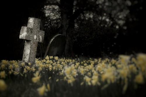 Churchyard flowers