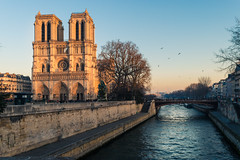 Notre Dame_ (EroCop) Tags: pairs