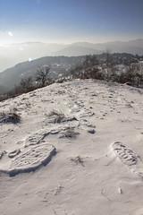 Les dinausores sont de retour (mrieffly) Tags: vosgesalsace htrhin traces neige montagne canoneos50d