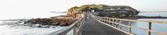 a DSCN1084-1 (annh49) Tags: laperouse bareisland landscape landscapephotography sydney leadinglines bridge