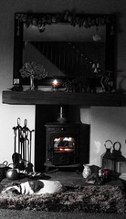 Cosy Fire (ThePurpleMagpie) Tags: log burner hearth home fire dog