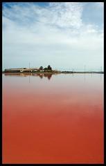 Salinas de San Pedro, Murcia (dsevilla) Tags: blue red espaa azul d50 spain rojo nikon san searchthebest dsevilla salinas murcia pedro reflejo cp reflexions reflejos