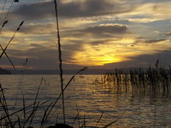 Bolsena 2 (Stranju) Tags: sunset lago tramonto weekend sole acqua bolsena lazio onlythebest giunchi p1f1 stranju calmapiatta