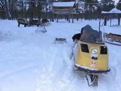 Snowmobile in russian siberian village (ugraland) Tags: life fish russia north siberia hunter ethnic indigenous mansi ugra khanty