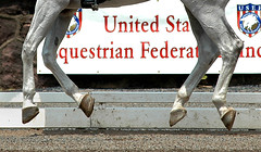 Off the ground (Rock and Racehorses) Tags: horses nj gladstone dressage flyinganimals usef