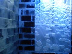 Ice Bar@nishi azabu