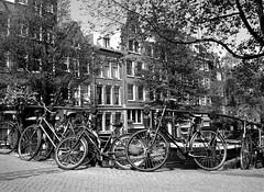 Egelantiersgracht (ClydeHouse) Tags: bridge bw amsterdam bicycle canal brug gable fiets gracht egelantiersgracht bykarl