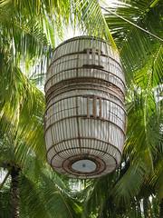 IMG_0293 (thebadpete) Tags: honeymoon maldives banyantree