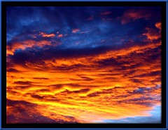 Joy in the Morning (Cheap Camera Tricks) Tags: california sky nature clouds sunrise 35mm canon desert antelopevalley eyecatcher kerncounty explore6august06 35mmscan
