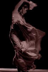 0343 Shimmering Flamenco por mrtriggerfinger