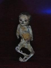WWJ 1 105 (kalindcarpenter) Tags: las de guanajuato momias