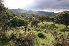 Sierra de Aracena (Huelva)