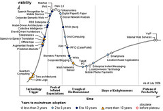 Hype Cycle 2006