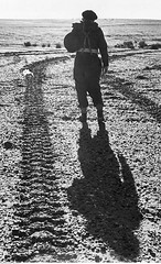 #Tank tracks left by a tank from the 2nd Independent Armoured Brigade, Polish II Corps during training, and a soldier walking alongside them. Egypt, January 1943. [2143x3520][OS] #history #retro #vintage #dh #HistoryPorn http://ift.tt/2gwX90U (Histolines) Tags: histolines history timeline retro vinatage tank tracks left by from 2nd independent armoured brigade polish ii corps during training soldier walking alongside them egypt january 1943 2143x3520os vintage dh historyporn httpifttt2gwx90u