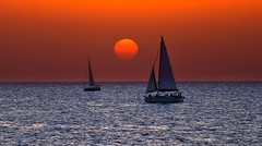 Sailing at sunset - Tel-Aviv beach (Lior. L) Tags: sailingatsunsettelavivbeach sailingatsunset telaviv beach sailing sunset telavivbeach sea seascapes sun sailboats sail sailboat silhouettes boats travel travelinisrael