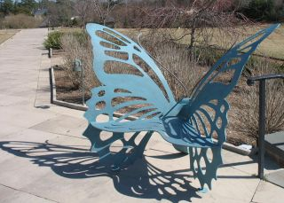 IMG_2878 butterfly bench