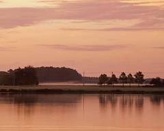 Landscape, Week 37 Challenege (DASEye) Tags: lake sunrise landscape dawn virginia nikon farm farmland vistas virginiabeach challenge 52 2015 week37 davidadamson daseye 52in2015 52in2015challenge