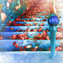 Rverie  d'automne prcoce (Dom Guillochon) Tags: california usa fall colors leaves wall architecture stairs automne early ramp sandiego stones couleurs down somewhere daydream balboapark rverie palmcanyon prcoce