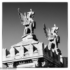 griffins hating gulls (Anitab) Tags: barcelona statue spain architechture seagull griffin