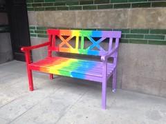 229/365 Proud bench