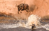 DSC_2250 (Jorge kaplan) Tags: africa kenia kenya nikkor nikon 28300mm safari d750 masai masaimara mara