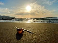 La plage du Rocher Noir (Naim H) Tags: sun lumix soleil panasonic plage algérie jijel tz7