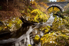 Autumn on the Tweed. (Stuart Stevenson) Tags: uk bridge autumn colour photography golden scotland rustic autumnal tweed rivertweed clydevalley autumngold tweedvalley oldstonebridge stuartstevenson appicoftheweek