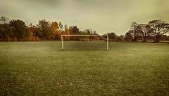 The Beautiful Game (Dave_Davies) Tags: winter playing field football goal cardiff posts pontcanna