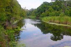 Чисты, прозрачны воды реки Битюг. Отражается в них небо и даже звезды по ночам.