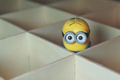 Minions in der Kiste / Minions in the crate (ingrid eulenfan) Tags: macromondays macro makro kiste ecke corner holzkiste minions crate box sonyilca77m2