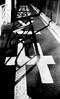 熱転写 (heat transfer) (Dinasty_Oomae) Tags: aires アイレス aires35 アイレス35 aires35iiia アイレス35iiia 白黒写真 白黒 bw blackwhite blackandwhite monochrome outdoor 東京都 東京 tokyo 江東区 kotoku