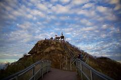 Under the Clouds (cookedphotos) Tags: canon 5dmarkii travel hawaii oahu diamondhead crater park hike hiking dawn morning sunrise diamondheadcrater honolulu sky clouds tourists selfies